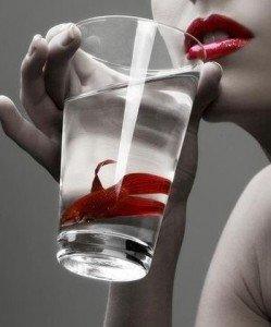 Un petit verre à partager dans XS, MON BLOG au fil des jours boisson-blog-249x300